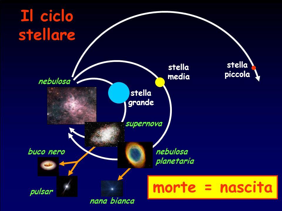 stella piccola stella media stella grande supernova nebulosa planetaria nebulosa nana bianca pulsar buco nero Il ciclo stellare morte = nascita