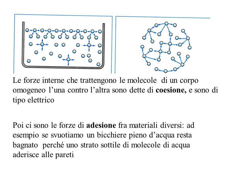 Le forze interne che trattengono le molecole di un corpo omogeneo luna contro laltra sono dette di coesione, e sono di tipo elettrico Poi ci sono le forze di adesione fra materiali diversi: ad esempio se svuotiamo un bicchiere pieno dacqua resta bagnato perché uno strato sottile di molecole di acqua aderisce alle pareti