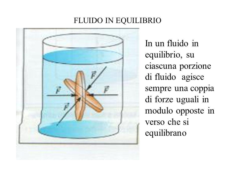 FLUIDO IN EQUILIBRIO In un fluido in equilibrio, su ciascuna porzione di fluido agisce sempre una coppia di forze uguali in modulo opposte in verso che si equilibrano