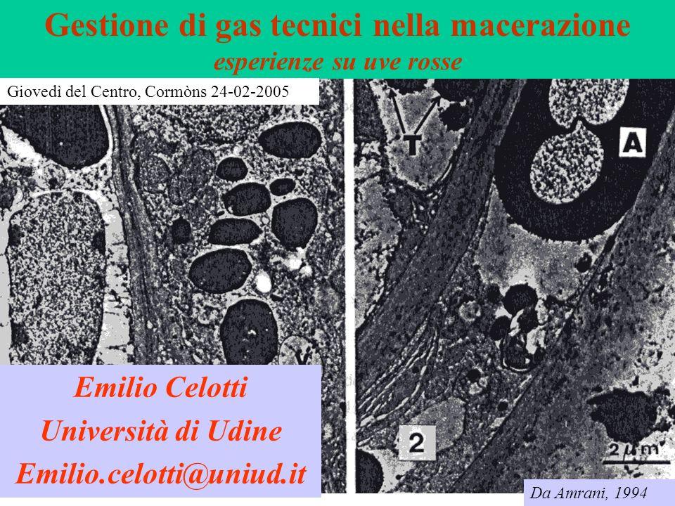 Gestione di gas tecnici nella macerazione esperienze su uve rosse Emilio Celotti Università di Udine Emilio.celotti@uniud.it Da Amrani, 1994 Giovedì d
