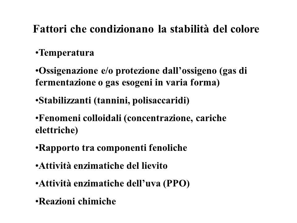 Temperatura Ossigenazione e/o protezione dallossigeno (gas di fermentazione o gas esogeni in varia forma) Stabilizzanti (tannini, polisaccaridi) Fenom