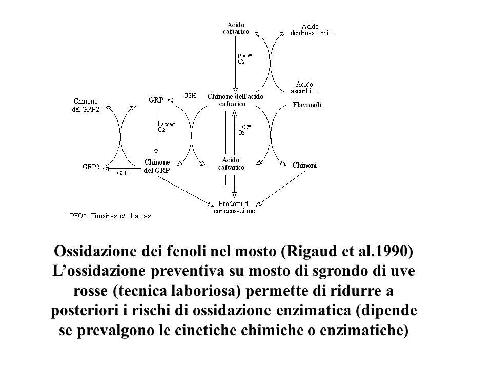 Ossidazione dei fenoli nel mosto (Rigaud et al.1990) Lossidazione preventiva su mosto di sgrondo di uve rosse (tecnica laboriosa) permette di ridurre