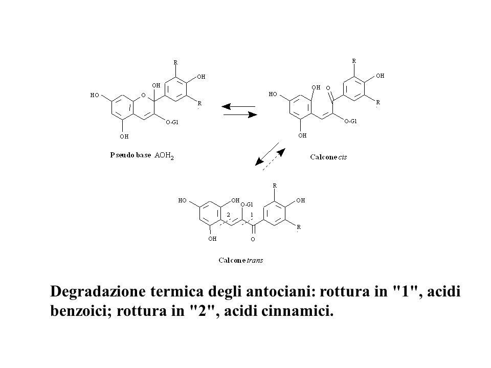 Degradazione termica degli antociani: rottura in