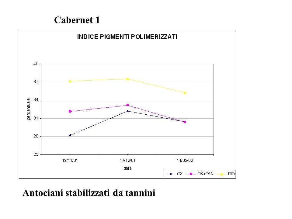 Antociani stabilizzati da tannini Cabernet 1