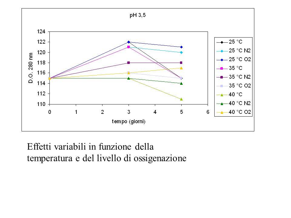 Effetti variabili in funzione della temperatura e del livello di ossigenazione