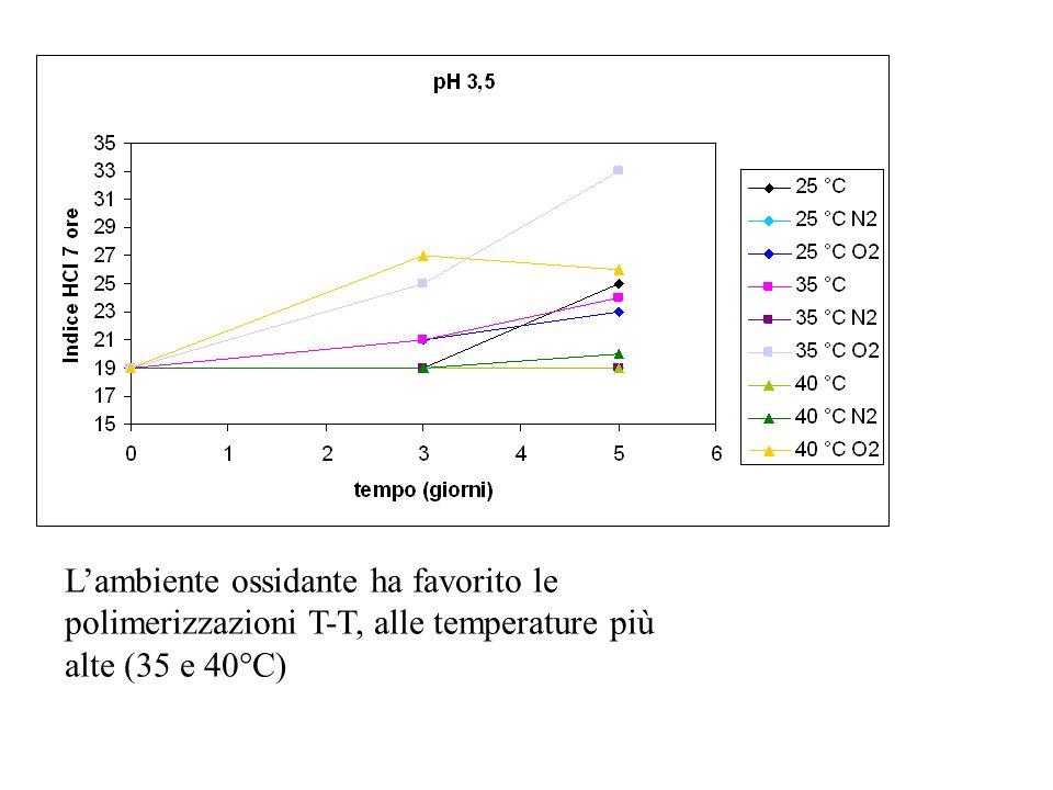 Lambiente ossidante ha favorito le polimerizzazioni T-T, alle temperature più alte (35 e 40°C)