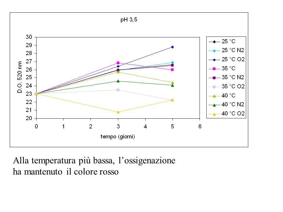 Alla temperatura più bassa, lossigenazione ha mantenuto il colore rosso