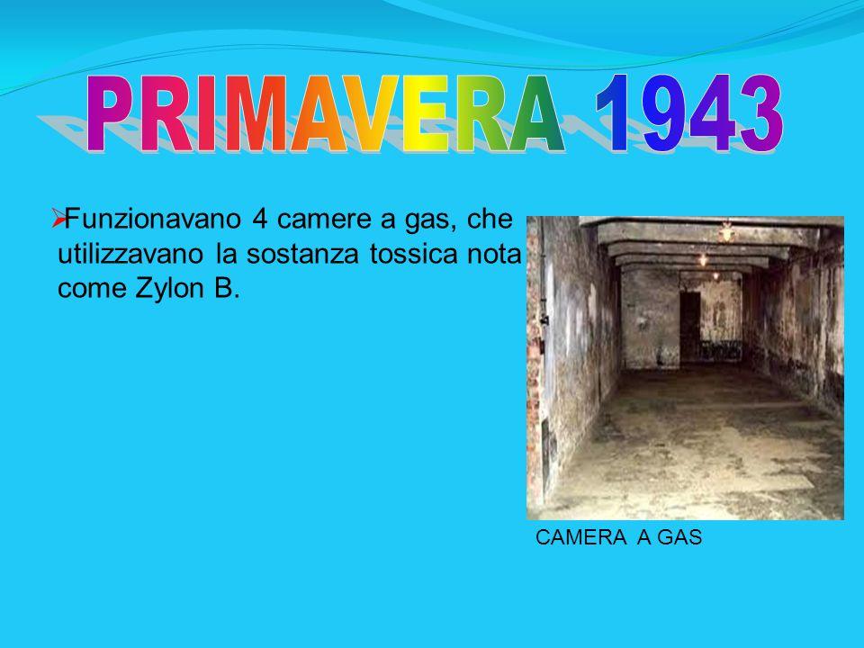 Funzionavano 4 camere a gas, che utilizzavano la sostanza tossica nota come Zylon B. CAMERA A GAS