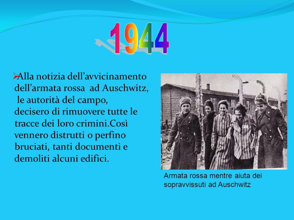 Armata rossa mentre aiuta dei sopravvissuti ad Auschwitz Alla notizia dellavvicinamento dellarmata rossa ad Auschwitz, le autorità del campo, decisero