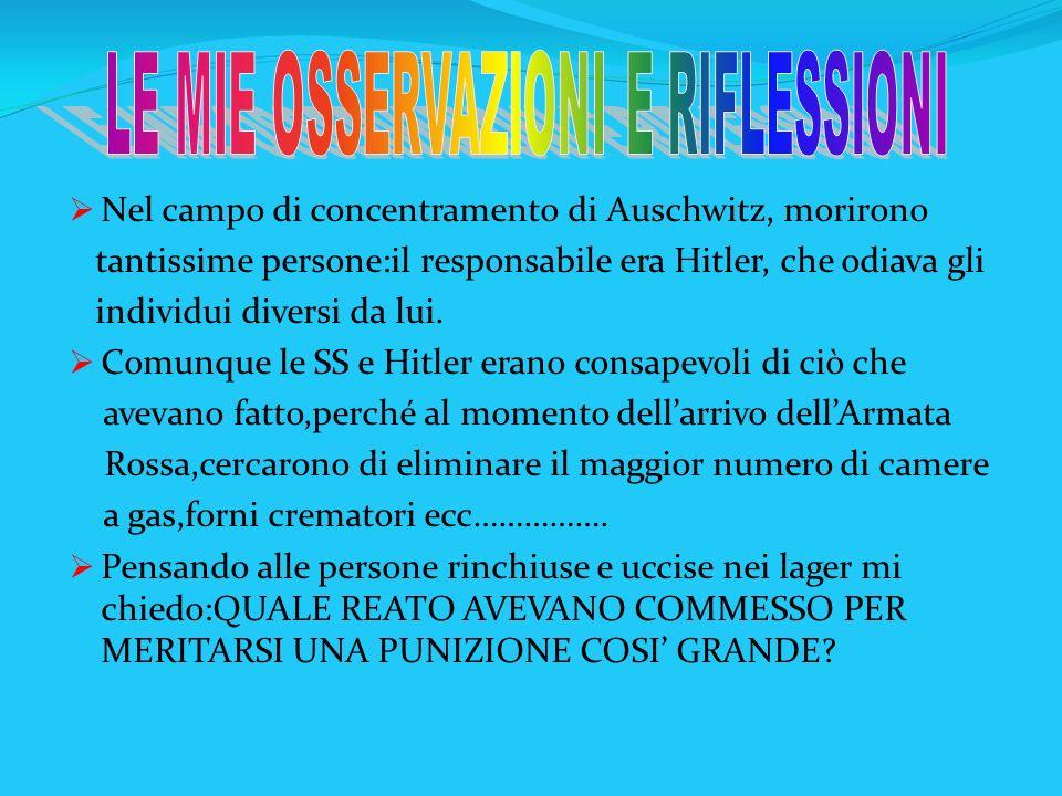 Nel campo di concentramento di Auschwitz, morirono tantissime persone:il responsabile era Hitler, che odiava gli individui diversi da lui. Comunque le