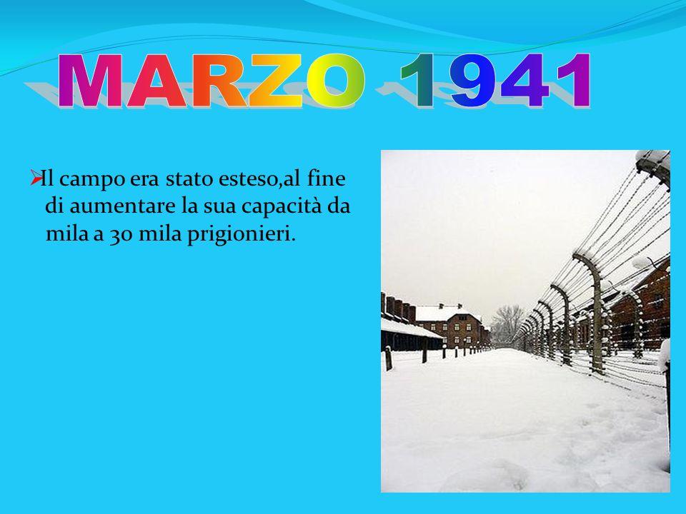 Il campo era stato esteso,al fine di aumentare la sua capacità da mila a 30 mila prigionieri.
