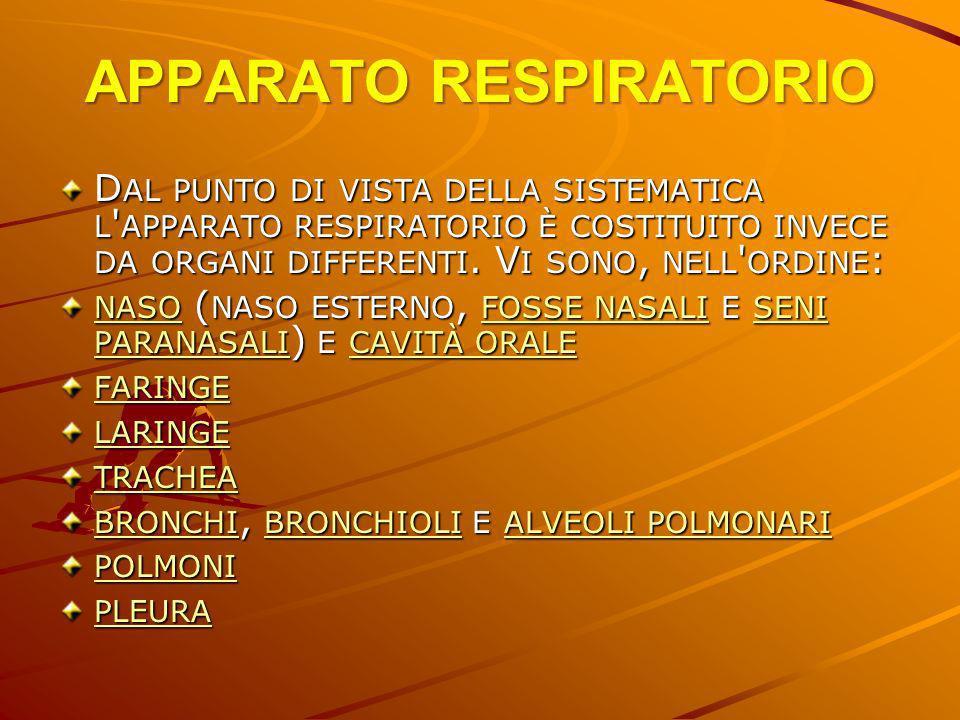 APPARATO RESPIRATORIO Durante la normale respirazione i polmoni si espandono e si contraggono facilmente e ritmicamente all interno della gabbia toracica.