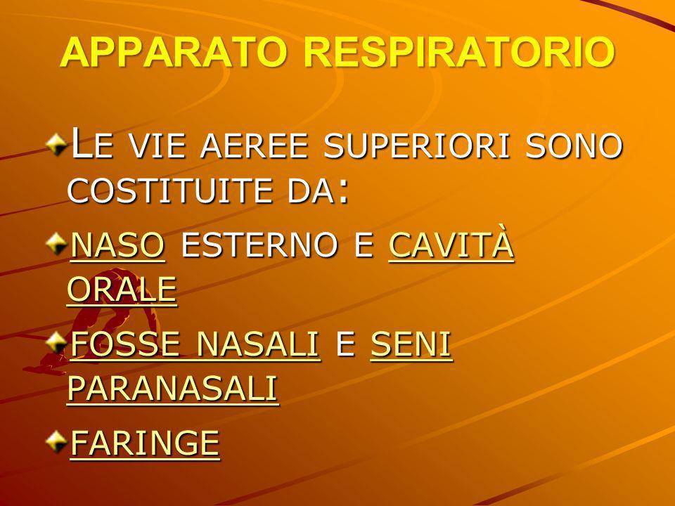 APPARATO RESPIRATORIO CAPACITÀ INSPIRATORIA = È IL VOLUME MASSIMO DI ARIA CHE PUÒ ESSER INTRODOTTA = ARIA CORRENTE + RISERVA INSPIRATORI CAPACITÀ FUNZIONALE RESIDUA = CORRISPONDE AL VOLUME D ARIA CHE È = VOLUME DI RISERVA ESPIRATORIO + VOLUME RESIDUO VENTILAZIONE POLMONARE = È DATA DAL PRODOTTO DELLA FREQUENZA RESPIRATORIA PER IL VOLUME CORRENTE ES: 15/MIN X 500ML = 7500ML/MIN ;POICHÉ DEI 500 ML DELL ARIA CORRENTE CA.150 ML VANNO AD OCCUPARE LO SPAZIO MORTO RESPIRATORIO IL REALE VOLUME DI GAS CHE È IN CONTATTO CON GLI ALVEOLI È DI CA.