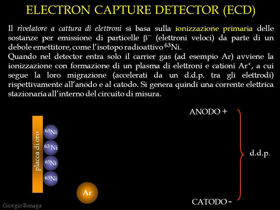ELECTRON CAPTURE DETECTOR (ECD) Il rivelatore a cattura di elettroni si basa sulla ionizzazione primaria delle sostanze per emissione di particelle (e
