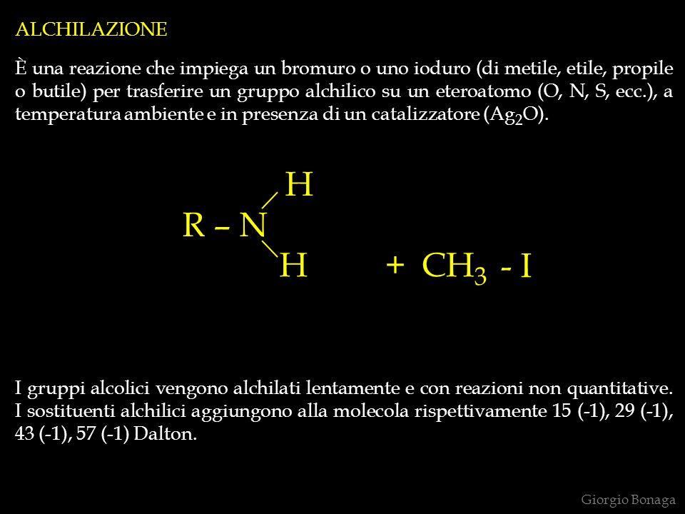 ALCHILAZIONE È una reazione che impiega un bromuro o uno ioduro (di metile, etile, propile o butile) per trasferire un gruppo alchilico su un eteroato