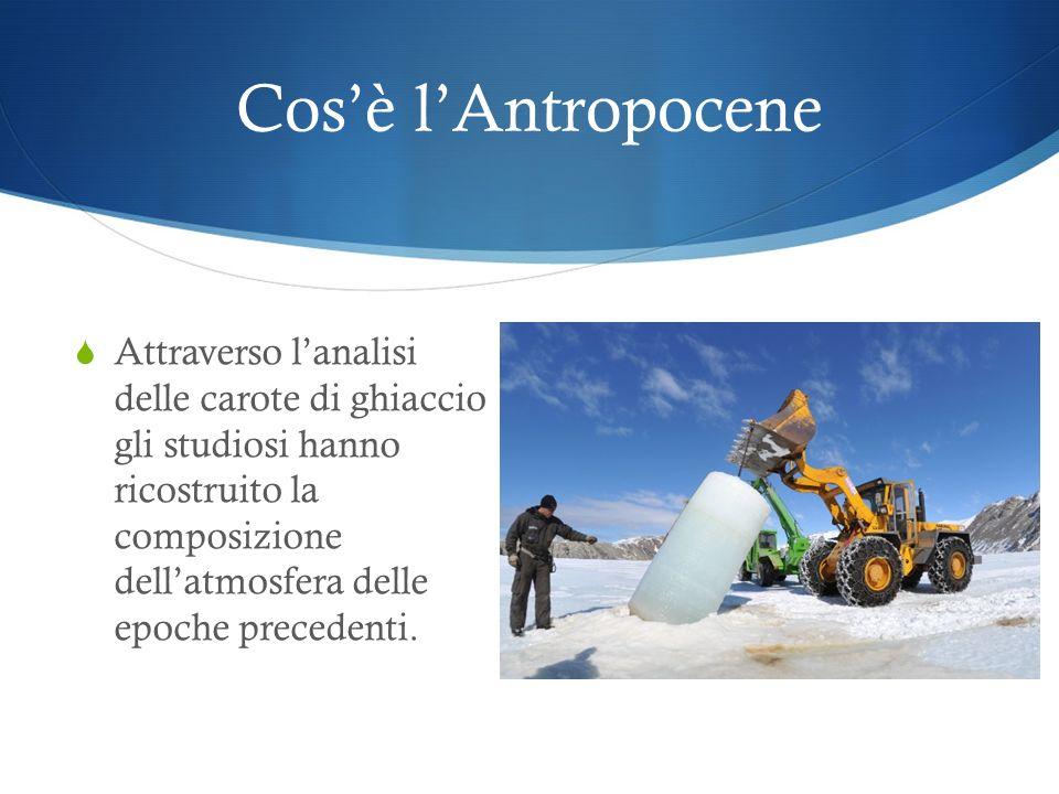 Cosè lAntropocene Con il termine Antropocene si indica l'ultimo periodo geologico in cui le condizioni ambientali e climatiche sono state profondament