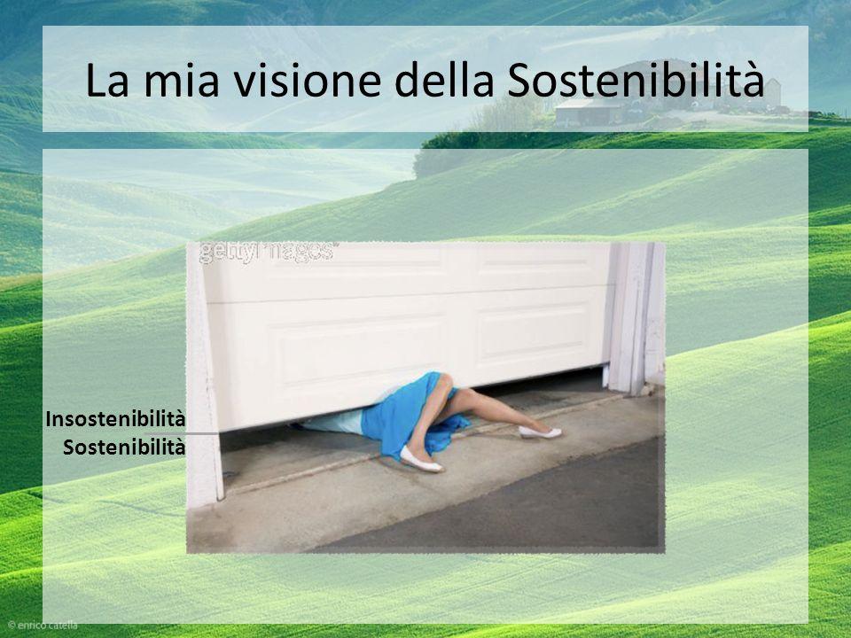La mia visione della Sostenibilità Insostenibilità Sostenibilità