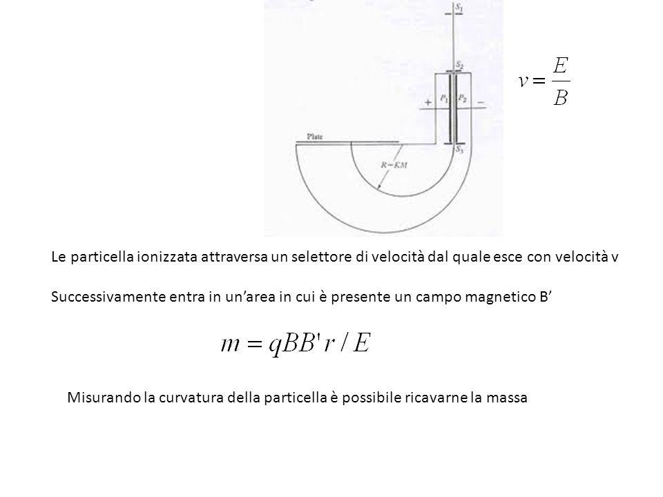 Le particella ionizzata attraversa un selettore di velocità dal quale esce con velocità v Successivamente entra in unarea in cui è presente un campo magnetico B Misurando la curvatura della particella è possibile ricavarne la massa