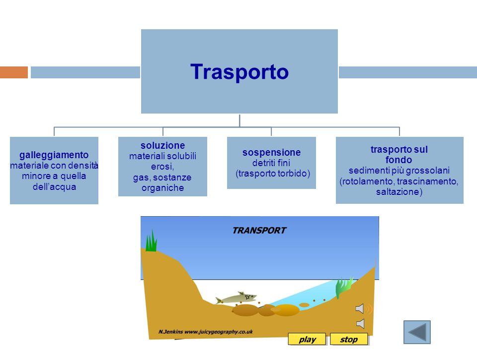 Trasporto galleggiamento materiale con densità minore a quella dellacqua soluzione materiali solubili erosi, gas, sostanze organiche sospensione detri