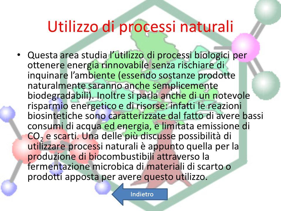 Utilizzo di processi naturali Questa area studia lutilizzo di processi biologici per ottenere energia rinnovabile senza rischiare di inquinare lambien