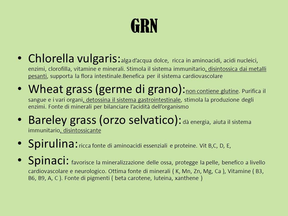 GRN Chlorella vulgaris: alga dacqua dolce, ricca in aminoacidi, acidi nucleici, enzimi, clorofilla, vitamine e minerali. Stimola il sistema immunitari