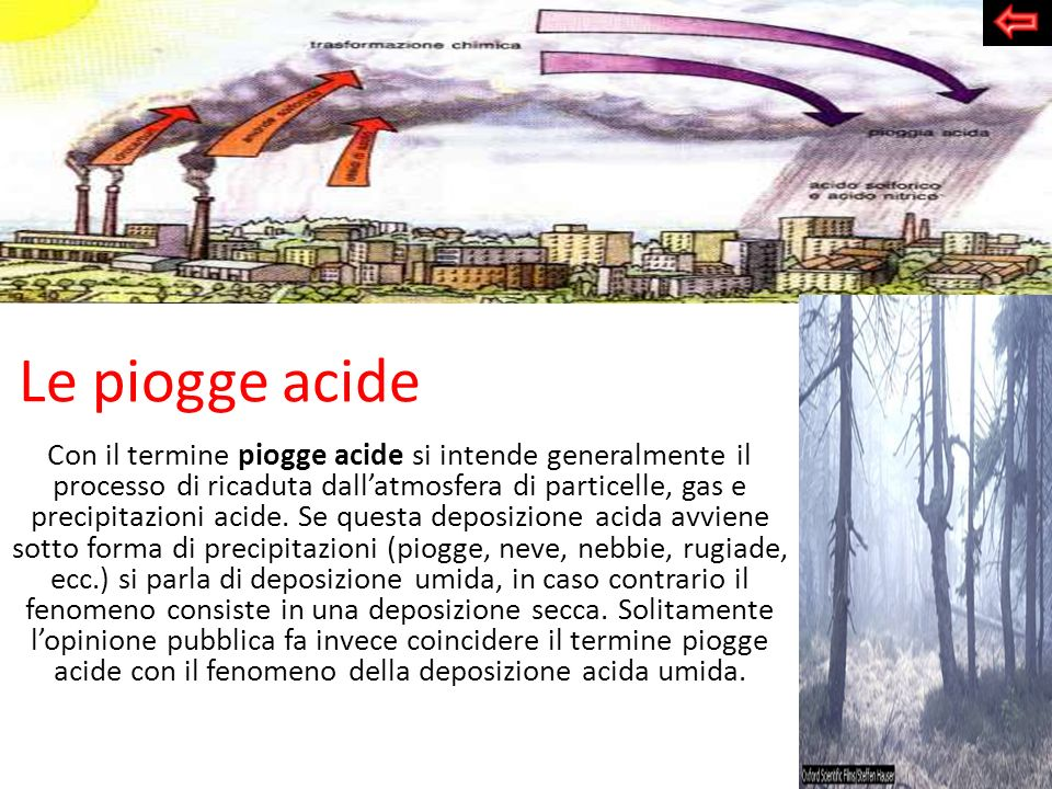 Le piogge acide Con il termine piogge acide si intende generalmente il processo di ricaduta dallatmosfera di particelle, gas e precipitazioni acide. S