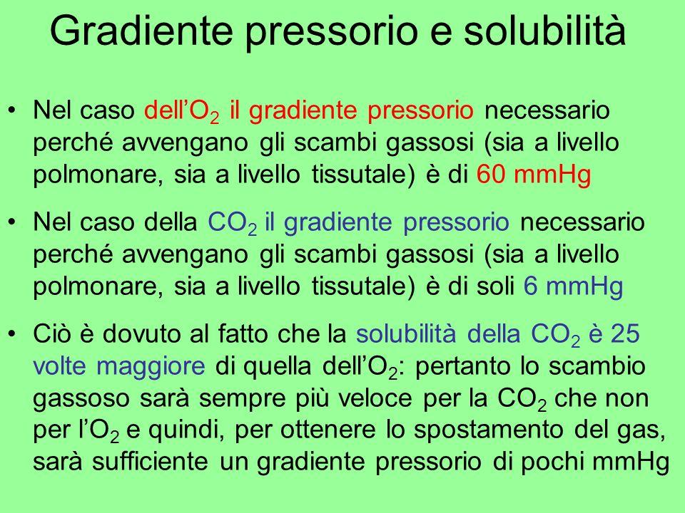 Gradiente pressorio e solubilità Nel caso dellO 2 il gradiente pressorio necessario perché avvengano gli scambi gassosi (sia a livello polmonare, sia