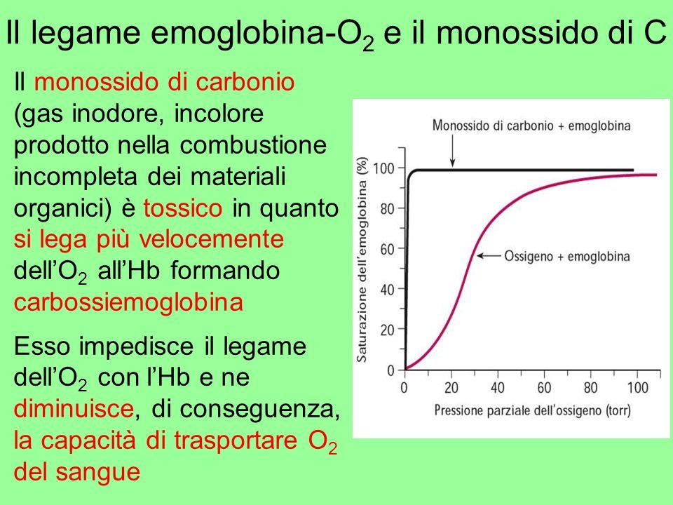 Il legame emoglobina-O 2 e il monossido di C Il monossido di carbonio (gas inodore, incolore prodotto nella combustione incompleta dei materiali organ