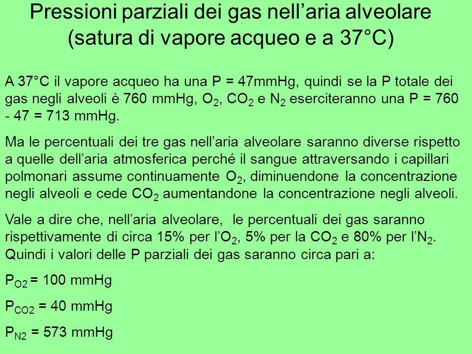 Pressioni parziali nei liquidi I gas mantengono gran parte delle loro caratteristiche molecolari quando si trovano in soluzione Quindi anche nel sangue si possono valutare le pressioni parziali dellO2 e della CO2 (N2 non partecipa agli scambi respiratori) Se la pressione totale deve rimanere costante, quando aumenta una pressione parziale, laltra deve ridursi