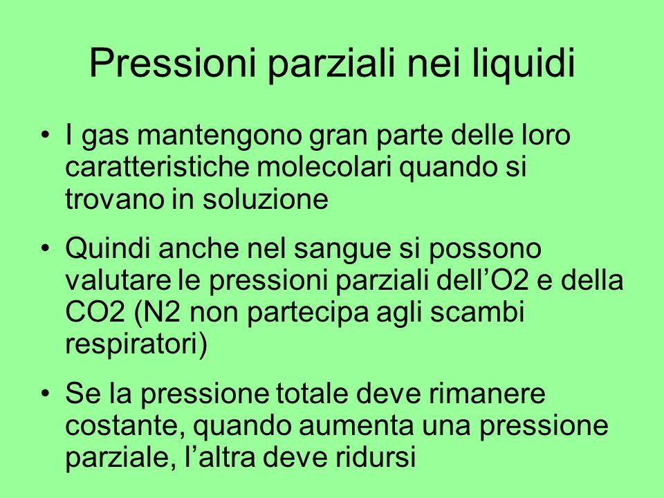 Pressioni parziali nei liquidi I gas mantengono gran parte delle loro caratteristiche molecolari quando si trovano in soluzione Quindi anche nel sangu