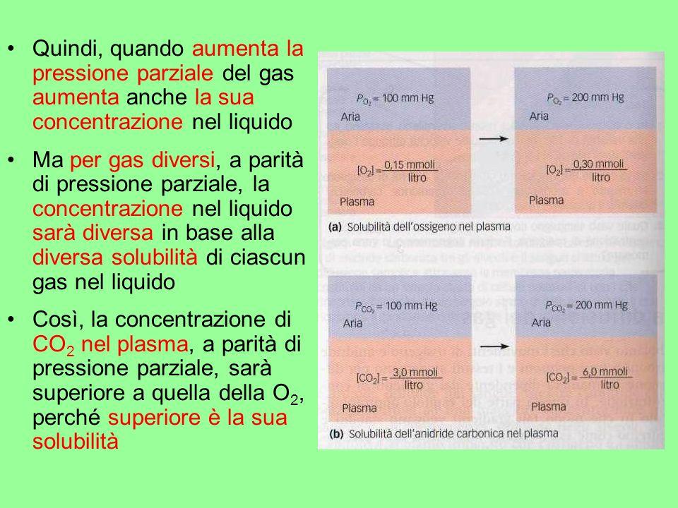 Quindi, quando aumenta la pressione parziale del gas aumenta anche la sua concentrazione nel liquido Ma per gas diversi, a parità di pressione parzial
