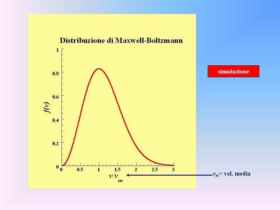 v m = vel. media simulazione