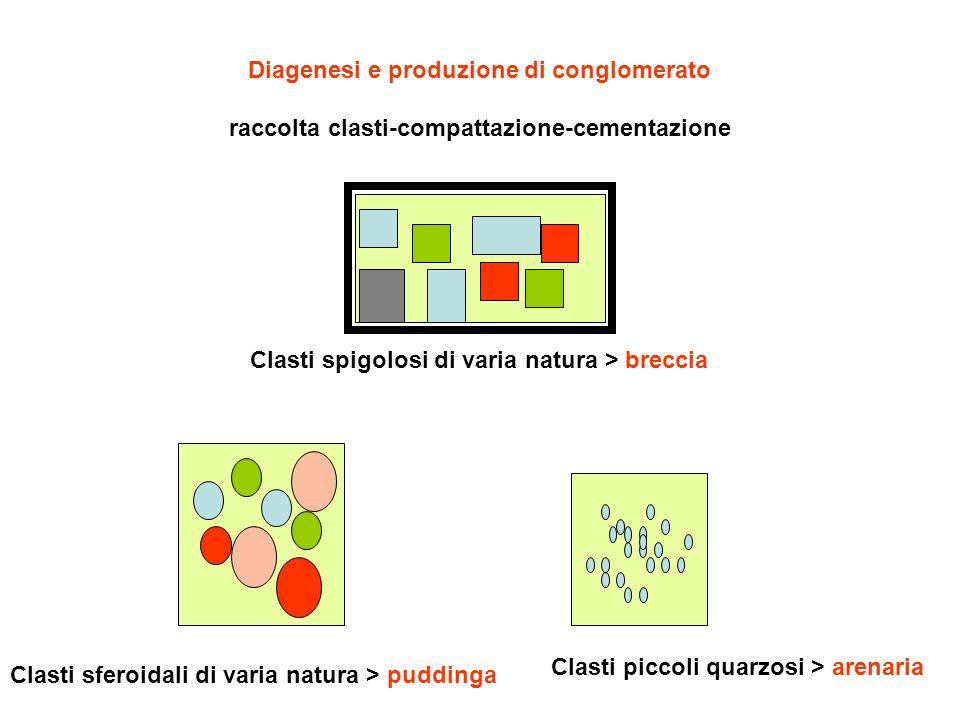 Diagenesi e produzione di conglomerato raccolta clasti-compattazione-cementazione Clasti spigolosi di varia natura > breccia Clasti sferoidali di vari