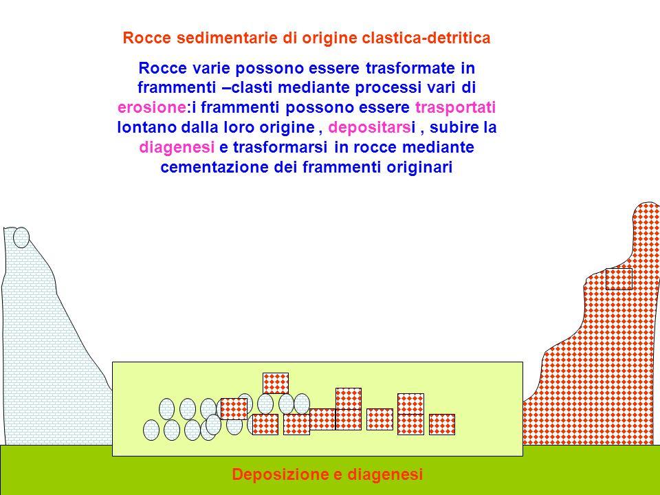 Rocce sedimentarie di origine clastica-detritica Rocce varie possono essere trasformate in frammenti –clasti mediante processi vari di erosione:i fram