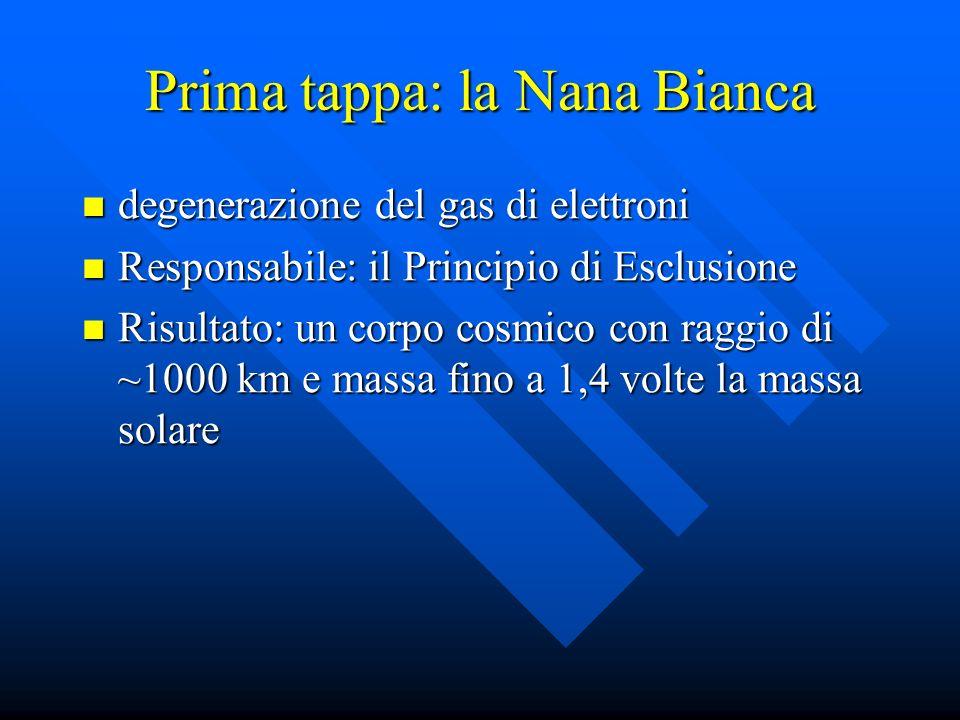 Prima tappa: la Nana Bianca degenerazione del gas di elettroni degenerazione del gas di elettroni Responsabile: il Principio di Esclusione Responsabil
