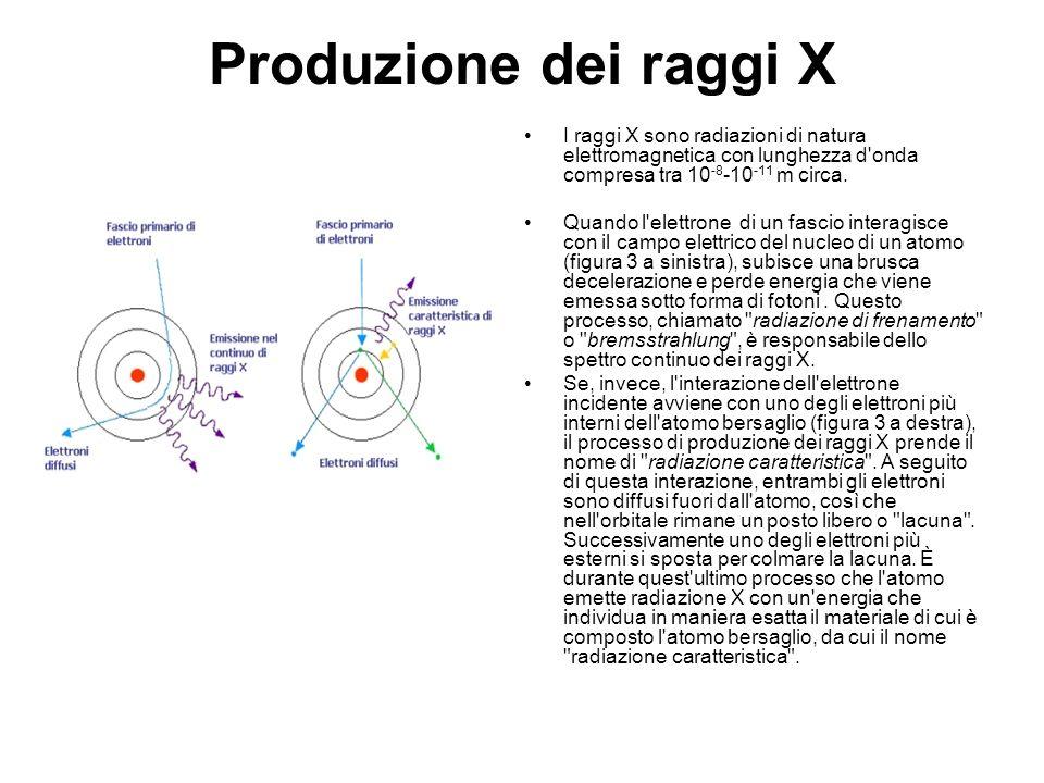 Produzione dei raggi X I raggi X sono radiazioni di natura elettromagnetica con lunghezza d'onda compresa tra 10 -8 -10 -11 m circa. Quando l'elettron