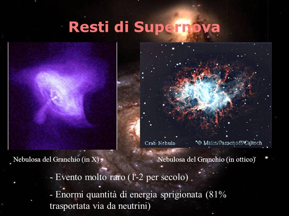 Resti di Supernova Nebulosa del Granchio (in X) Nebulosa del Granchio (in ottico) - Evento molto raro (1-2 per secolo) - Enormi quantità di energia sp