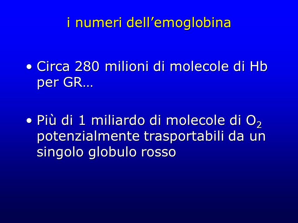 i numeri dellemoglobina Circa 280 milioni di molecole di Hb per GR…Circa 280 milioni di molecole di Hb per GR… Più di 1 miliardo di molecole di O 2 po
