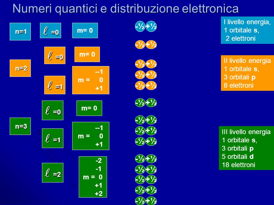 Numeri quantici e distribuzione elettronica n=1 m= 0 =0 =0 -½+½ I livello energia, 1 orbitale s, 2 elettroni -½+½ n=2 m= 0 =0 =0 =1 =1 --1 m = 0 +1 -½