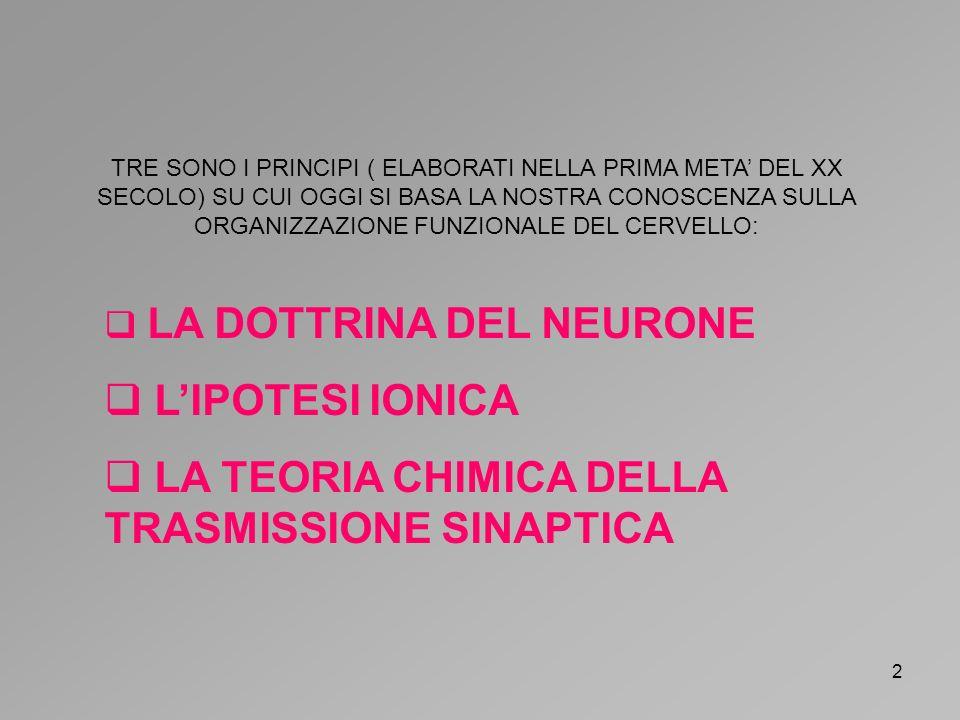 3 LA TEORIA DEL NEURONE AFFERMA CHE LA CELLULA NERVOSA, O NEURONE, E LUNITA BASE DEL CERVELLO NONCHE LELEMENTO FONDAMENTALE PER LA TRASMISSIONE DEI SEGNALI AL SUO INTERNO SANTIAGO RAMON Y CAJAL