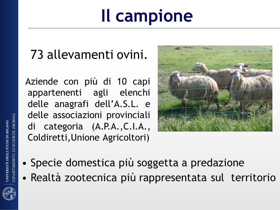 73 allevamenti ovini. Specie domestica più soggetta a predazione Realtà zootecnica più rappresentata sul territorio Il campione Aziende con più di 10