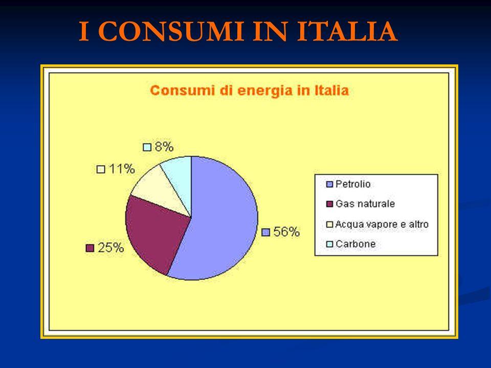 I CONSUMI IN ITALIA