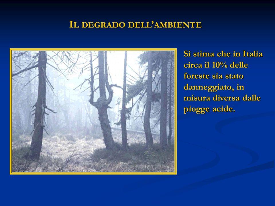 I L DEGRADO DELL AMBIENTE Si stima che in Italia circa il 10% delle foreste sia stato danneggiato, in misura diversa dalle piogge acide.