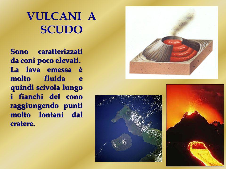 VULCANI LINEARI Sono formati da una frattura della superficie terrestre da dove escono grandi quantità di lava fluida.