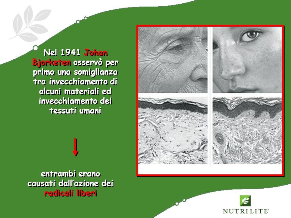 Nel 1941 Johan Bjorketen osservò per primo una somiglianza tra invecchiamento di alcuni materiali ed invecchiamento dei tessuti umani entrambi erano c
