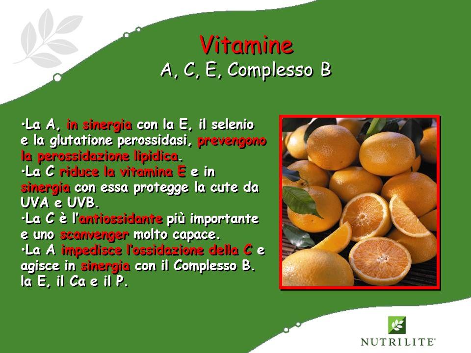 Vitamine A, C, E, Complesso B La A, in sinergia con la E, il selenio e la glutatione perossidasi, prevengono la perossidazione lipidica. La C riduce l