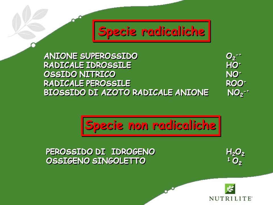 Specie radicaliche ANIONE SUPEROSSIDO O 2 - RADICALE IDROSSILE HO OSSIDO NITRICO NO RADICALE PEROSSILE ROO BIOSSIDO DI AZOTO RADICALE ANIONE NO 2 - AN