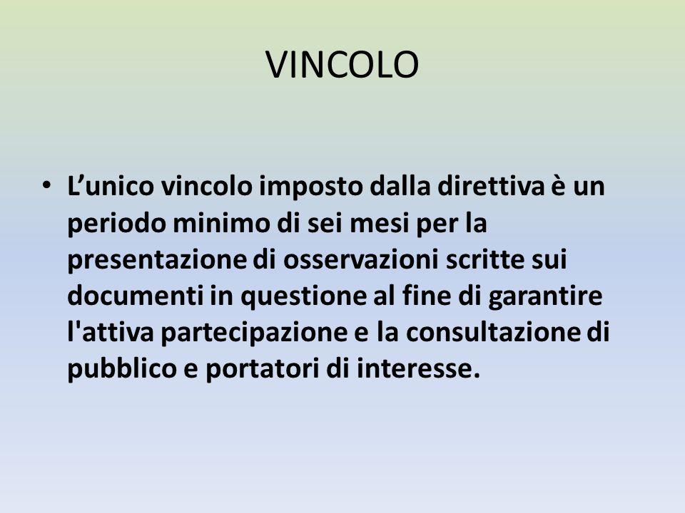 VINCOLO Lunico vincolo imposto dalla direttiva è un periodo minimo di sei mesi per la presentazione di osservazioni scritte sui documenti in questione