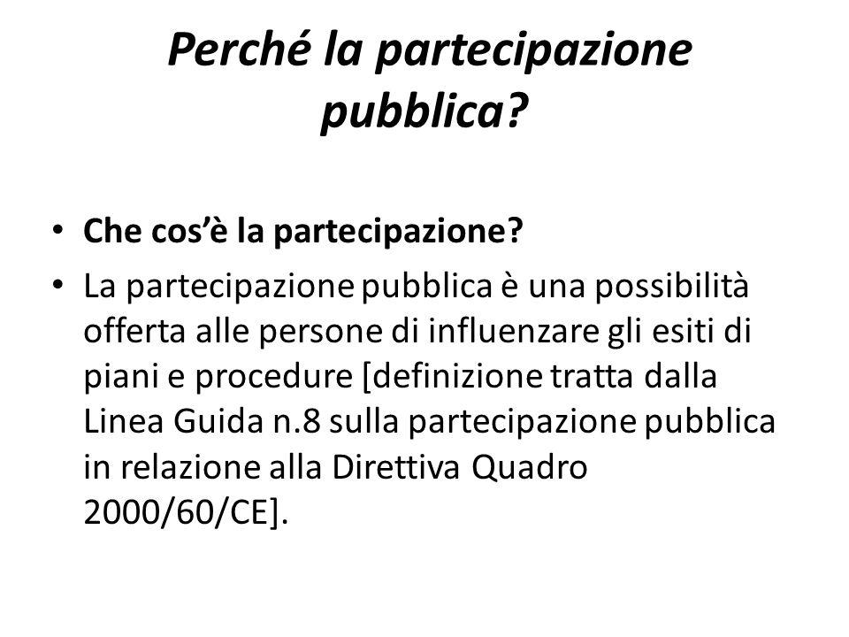 Perché la partecipazione pubblica? Che cosè la partecipazione? La partecipazione pubblica è una possibilità offerta alle persone di influenzare gli es