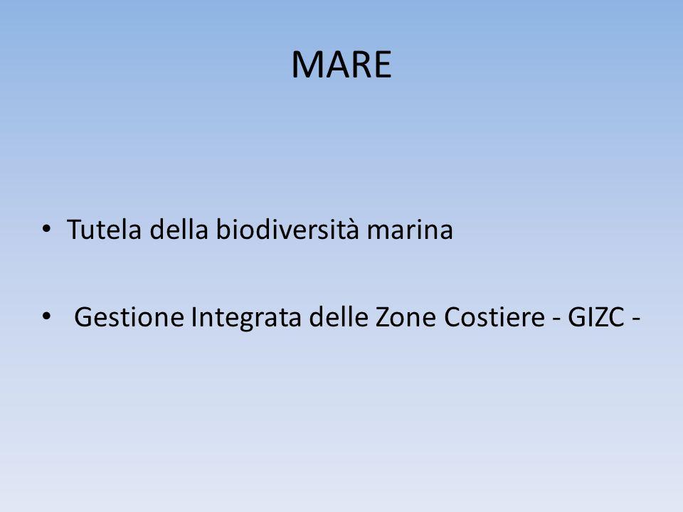 MARE Tutela della biodiversità marina Gestione Integrata delle Zone Costiere - GIZC -